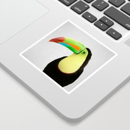Toucan - Colorful Sticker