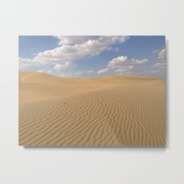 Desert day view Metal Print