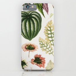Botanical Print iPhone Case