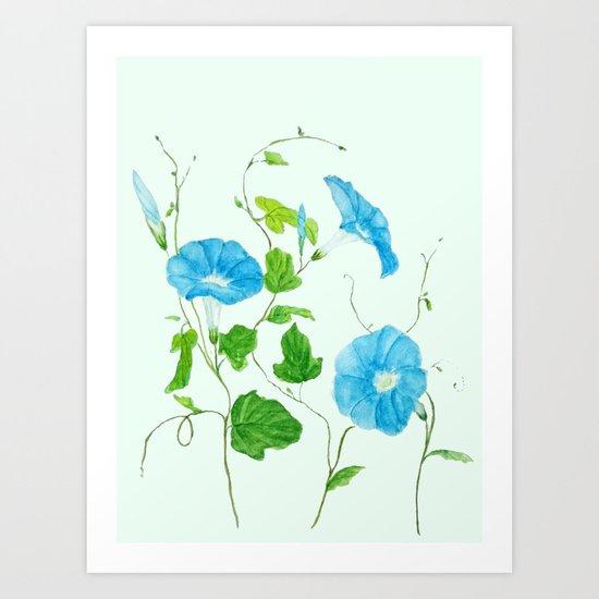 blue morning glory Art Print