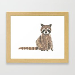 baby raccoon watercolor Framed Art Print