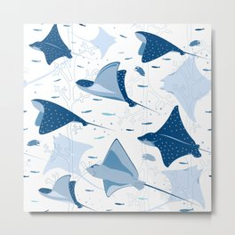 Blue stingrays // white background Metal Print