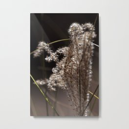 Fuzzy Brush Weed Metal Print