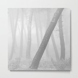 Inclined... Into the foggy woods Metal Print