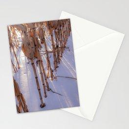 Frozen Corn Stationery Cards