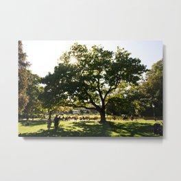 Stadtpark Metal Print