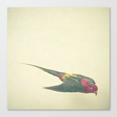 Bird Study #4 Canvas Print