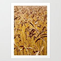 High grain image Art Print