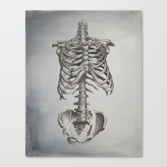 Skeleton Study Canvas Print