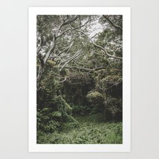 Hilo Jungle Art Print