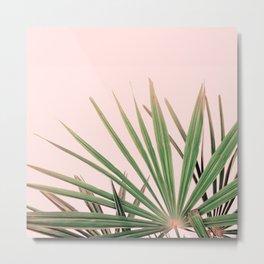 Palms blossom Metal Print