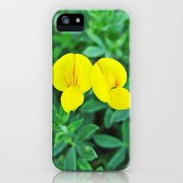 Santa Barbara Flowers 2528 iPhone Case