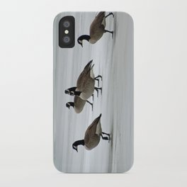 Graceful Geese iPhone Case