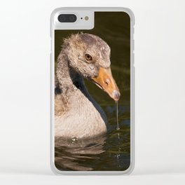 All Wet Clear iPhone Case