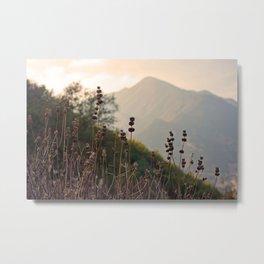 Ojai Mighty Mountain California Shine Metal Print