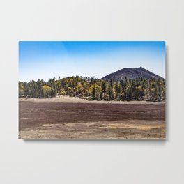 Meadow with Gold and Red Grasses Framed with Mountains by Lake Cuyamaca Metal Print