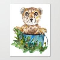 cheetah Canvas Prints featuring cheetah by Anna Shell
