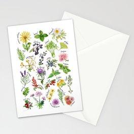 Plants & Herbs Alphabet Stationery Cards