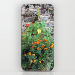 marigolds on stone wall iPhone Skin