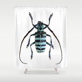 Anoplophora Graafi Beetle Shower Curtain