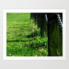 Green No.2 Art Print