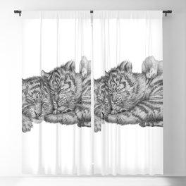 Tiger Naps Blackout Curtain