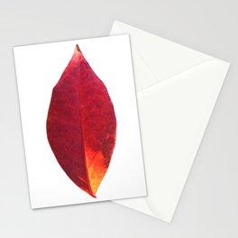 Botanical No. 1 Stationery Cards