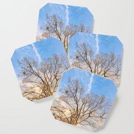Nature in Winter Coaster