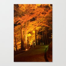 The Golden Path Canvas Print