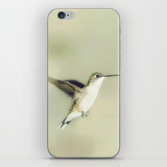 Mid flight iPhone & iPod Skin