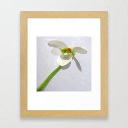 Unique Duvet Cover - Floral Design Framed Art Print