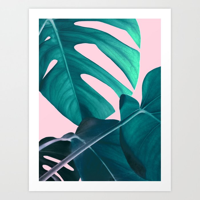 Monstera Moon with Pink Art Print