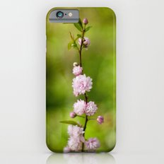 Flowering Almond Blossoms iPhone 6s Slim Case