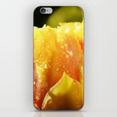 Raindrop Cactus Flower iPhone Skin