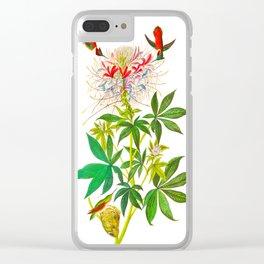 Ruff-Necked Hummingbird Clear iPhone Case