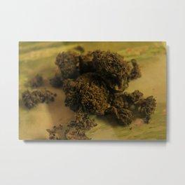 Cannabis VIII Metal Print
