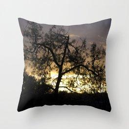 A Contraluz Throw Pillow