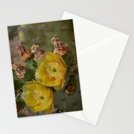 Yellow Cacti Blossoms Stationery Cards