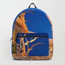 Dead Treestump In Beautiful Vast Barren Hillside Ultra HD Backpack