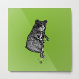 Ride On Bear_green Metal Print