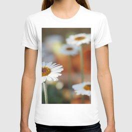 Daisys | marguerite T-shirt
