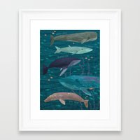 whales Framed Art Prints featuring Whales by Stephanie Fizer Coleman