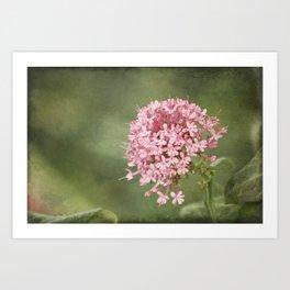 Pom Pom Landscape Art Print