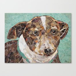 Looking for my Forever Home Canvas Print
