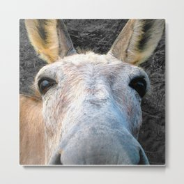 Watercolor Donkey Metal Print