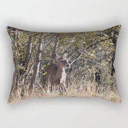 Young deer in Tonto Natural Bridge State Park Rectangular Pillow