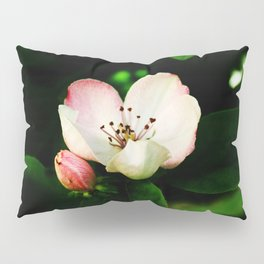 Quince Pink Flower and Bud Pillow Sham