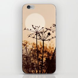 Dancing Silhouettes iPhone Skin
