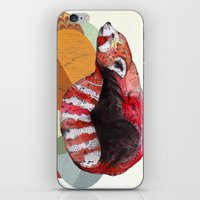 panda iPhone & iPod Skins featuring Red Panda by Sandra Dieckmann