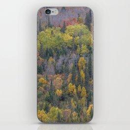 Detail of Peak Fall Colors in Northern Minnesota iPhone Skin